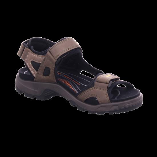 ecco ECCO OFFROAD M Herren Sandale Sandalette Trekking braun 06956456396
